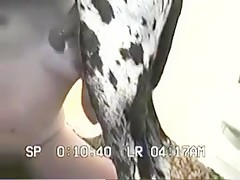 Marsked Girl with Harlequin Dane
