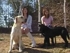 Cute asian girls suck and fuck 4 dogs at park and home